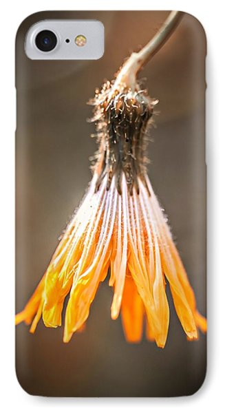 IPhone Case featuring the photograph Near The End by Michaela Preston