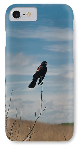 IPhone Case featuring the photograph Nebraska Red-winged Black Bird by Joshua House