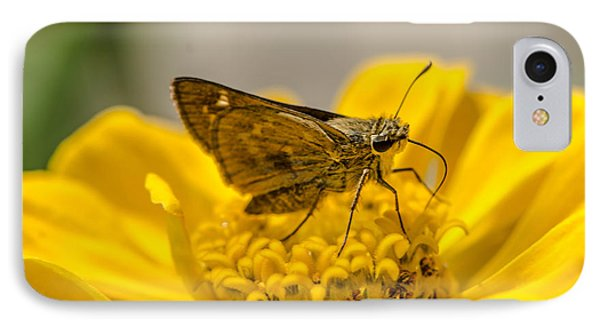 Nectar Delight IPhone Case by Bruce Pritchett