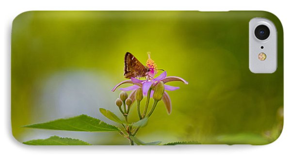 Nectar Treat IPhone Case by Az Jackson