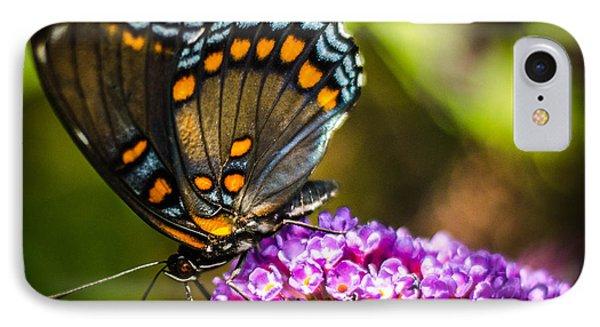 Butterfly Beauty  IPhone Case by Bruce Pritchett