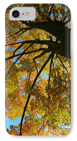 IPhone Case featuring the photograph Neighbor's Beauty by Polly Castor