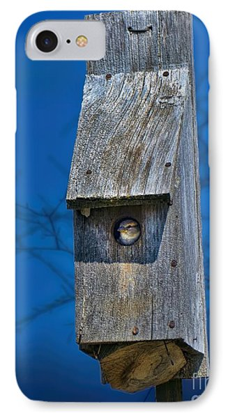 Nest Box In The Spring IPhone Case