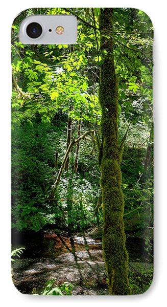 Nestucca River 3039 12x18 IPhone Case by Jerry Sodorff