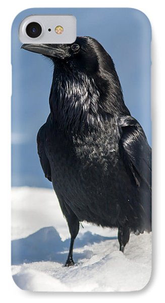 Nevermore IPhone Case by Jack Bell