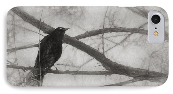 Nevermore IPhone Case by Melinda Wolverson