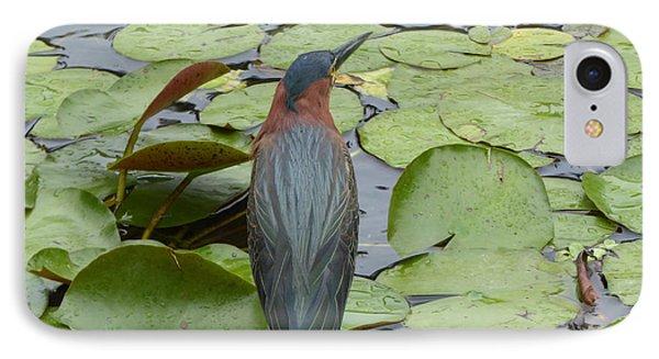 Nevis Bird Observes IPhone Case by Margaret Brooks