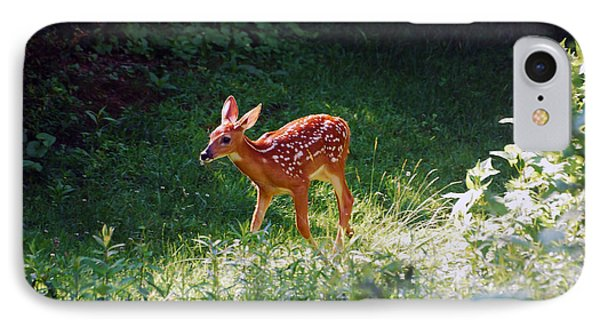New Backyard Visitor IPhone Case by Lori Tambakis