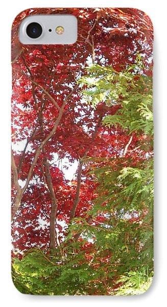 New England Autumn Globe IPhone Case