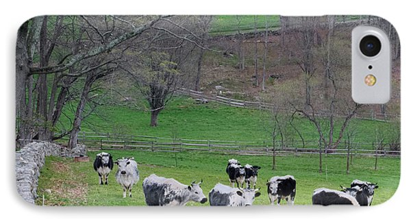 IPhone Case featuring the photograph New England Spring Pasture Square by Bill Wakeley