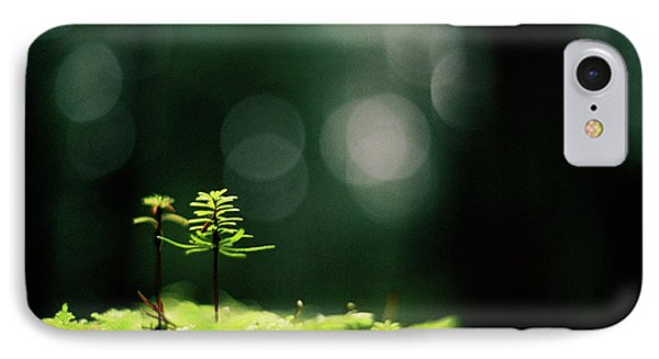 IPhone Case featuring the photograph New Forest by Cathie Douglas