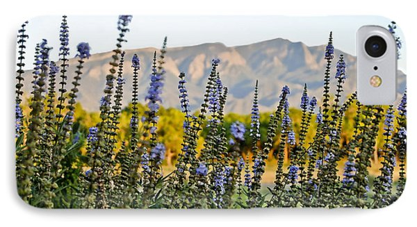 Santa Ana Beauty IPhone Case by Gina Savage
