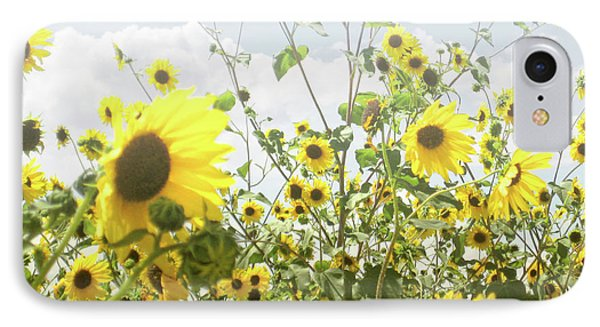 IPhone Case featuring the photograph New Mexico Sunflowers by Andrea Hazel Ihlefeld