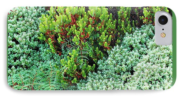 IPhone Case featuring the photograph New Zealand Flora by Michele Penner
