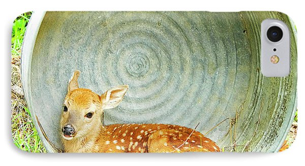 Newborn Fawn Finds Shelter In An Old Washtub IPhone Case by A Gurmankin