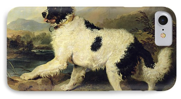 Newfoundland Dog Called Lion Phone Case by Sir Edwin Landseer