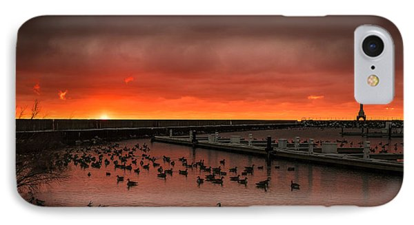 Newport Geese IPhone Case by James Meyer