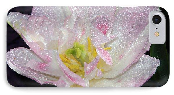 IPhone Case featuring the photograph Nice Tulip by Elvira Ladocki