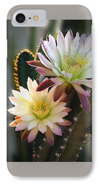 IPhone Case featuring the photograph Night-blooming Cereus 3 by Marilyn Smith