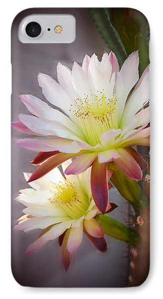 IPhone Case featuring the photograph Night Blooming Cereus by Marilyn Smith