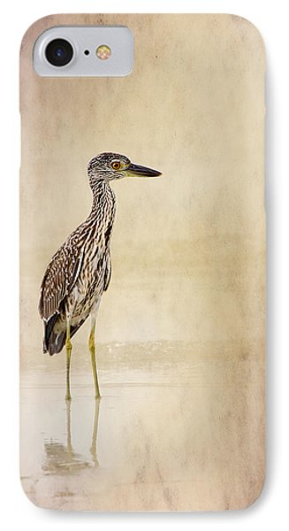 Night Heron 3 By Darrell Hutto IPhone Case by J Darrell Hutto