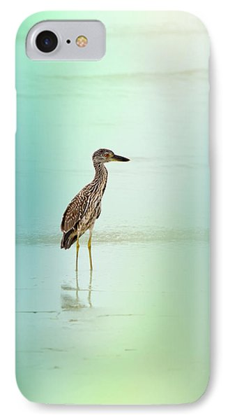 Night Heron By Darrell Hutto IPhone Case by J Darrell Hutto