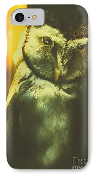 Night Owl IPhone Case by Jorgo Photography - Wall Art Gallery