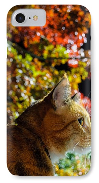 IPhone Case featuring the photograph Night Stalker by Tikvah's Hope