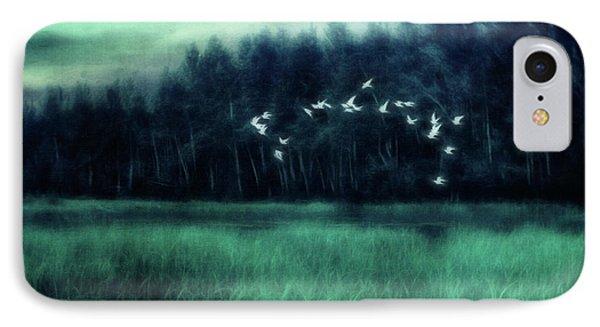 Nightbirds IPhone Case by Priska Wettstein