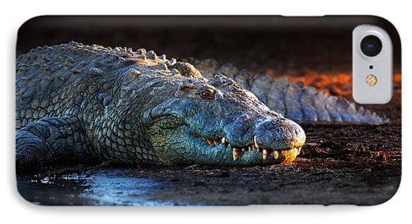 Nile Crocodile On Riverbank-1 Phone Case by Johan Swanepoel