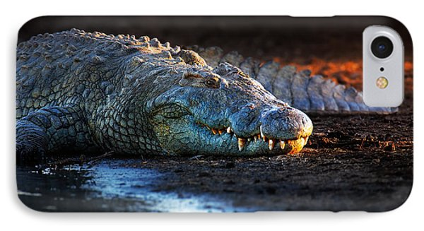 Nile Crocodile On Riverbank-1 IPhone Case by Johan Swanepoel