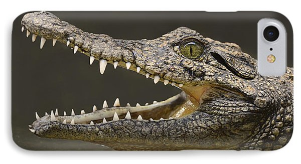 Nile Crocodile IPhone Case