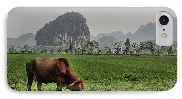 Ninh Binh Reserve  IPhone Case by Chuck Kuhn