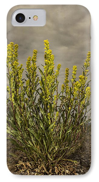 Nizina River Goldenrod IPhone Case