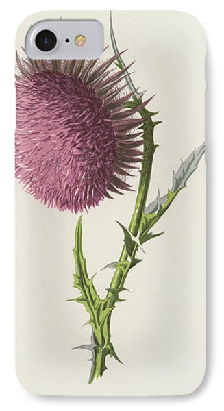 Nodding Thistle IPhone Case