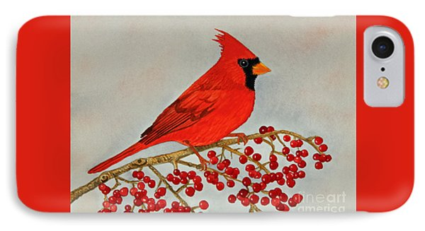 Northern Cardinal IPhone Case by Norma Appleton