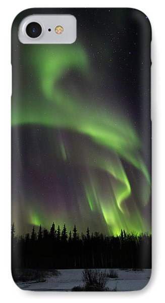 Northern Delight IPhone Case