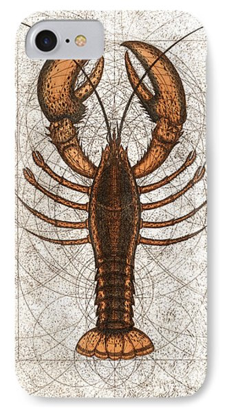 Northern Lobster IPhone Case by Charles Harden