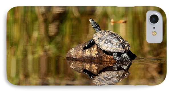 Northern Map Turtle IPhone Case
