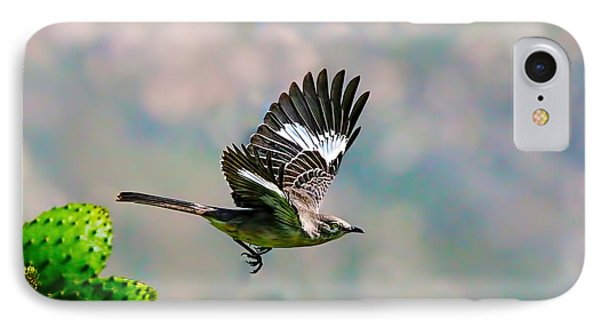 Northern Mockingbird Flying IPhone Case by Dan Redmon