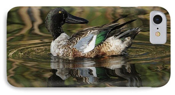 IPhone Case featuring the photograph Northern Shoveler Drake by Bradford Martin