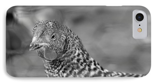 IPhone Case featuring the photograph Not Your Chicken Dinner by Lora Lee Chapman