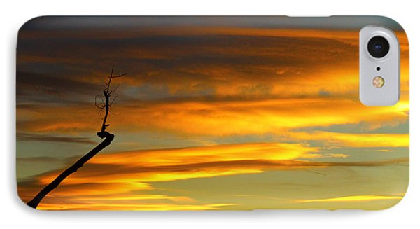 November Sunset Phone Case by James BO  Insogna