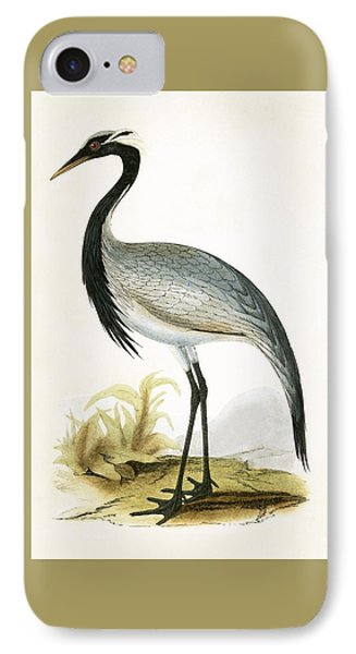 Numidian Crane IPhone 7 Case by English School