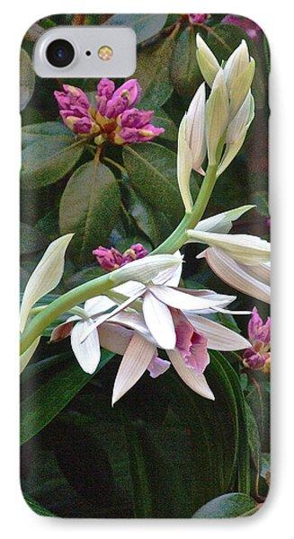 Nun Orchid IPhone Case by Janis Nussbaum Senungetuk