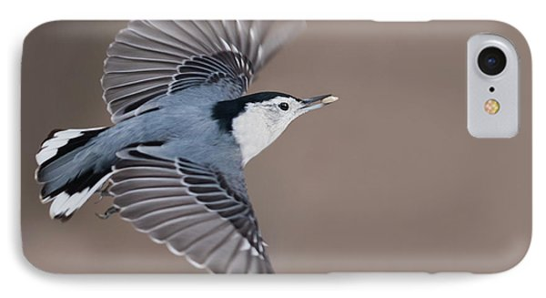 IPhone Case featuring the photograph Nuthatch In Flight by Mircea Costina Photography