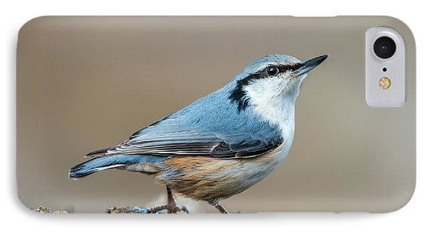 IPhone Case featuring the photograph Nuthatch's Pose by Torbjorn Swenelius