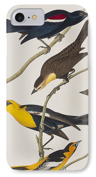 Nuttall's Starling Yellow-headed Troopial Bullock's Oriole IPhone 7 Case by John James Audubon