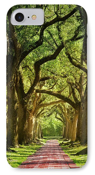 Oak Alley IPhone Case by Mikes Nature