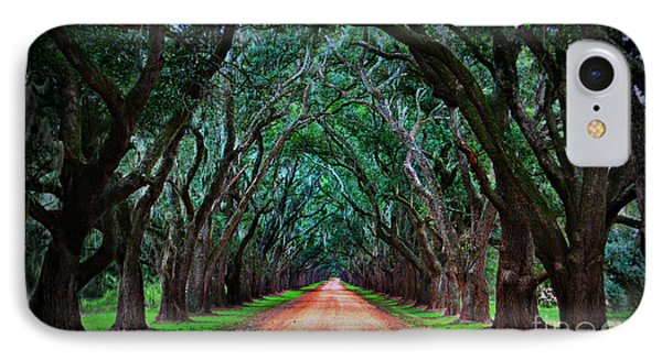 Oak Alley Road IPhone Case by Perry Webster
